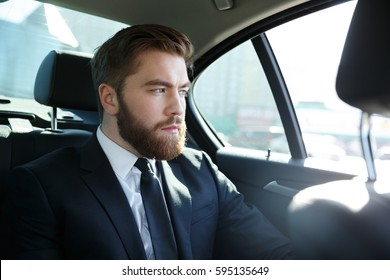 Concentated young business man in suit sitting in the back seat of car and looking out the window