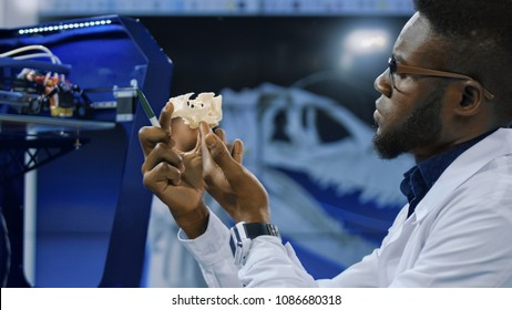 Concentrated african man in white medical gown exploring 3-D printed cranium for future developments in surgery and prosthesis engineering.