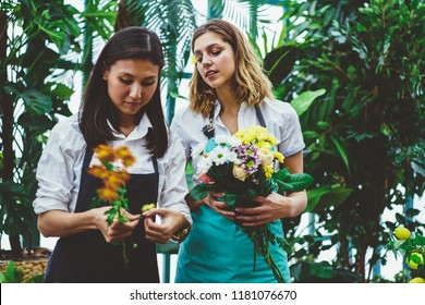 Concentrated female colleagues in apron working together in botanic orangery composing bouquets with fresh flowers for sale, asian floris making workshop for young employee during time in greenery