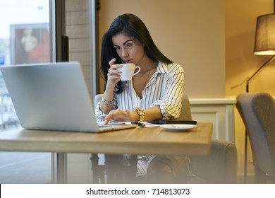 Concentrated female owner of company reading news from network starting working day with coffee cup and online media reviews, experienced businesswoman doing remote job using application on laptop