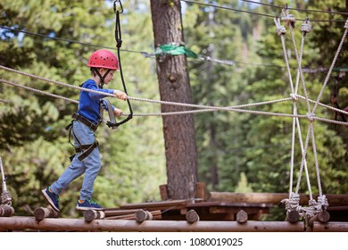 concentrated little boy climbing in treetop adventure park, healthy active lifestyle concept