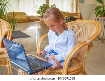 Concentrated little sweet girl with pigtails sitting behind laptop