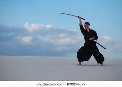 Sword Fighting Images, Stock Photos & Vectors | Shutterstock