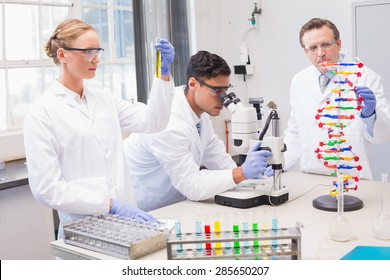 Concentrated scientists working together in laboratory