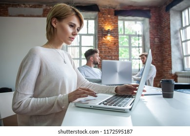 Concentrated young beautiful businesswoman working on laptop in bright modern office