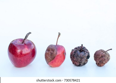 Concept of Aging, death, rebirth. Different stages of life.  Age disease influence. Apple transformation as a concept of body life human transformation. Metaphor of withering life.
