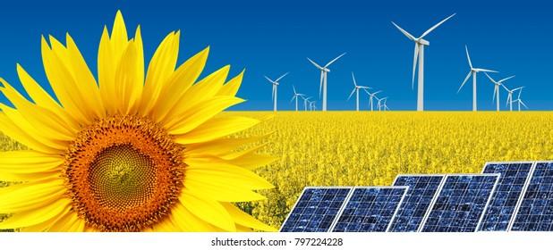 concept of alternative sustanaible energy