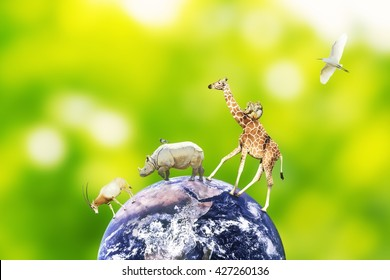 Concept of animal coexistence on earth. Elements of this image furnished by NASA.