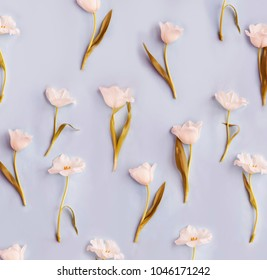 Concept background made of white tulip flowers/ Flat lay.