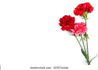 Concept background of May 9 russian holiday Victory Day. Red carnations isolated on white background. Flat lay, copy space
