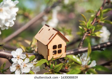 The concept of the beginning of spring. Miniature house on a flowering branch close-up and copy space. Wooden house and flowers as a postcard for the holiday. - Shutterstock ID 1630088839