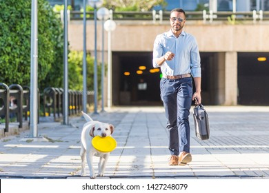 concept of businessman leisure - young black man with dog walking for the business area