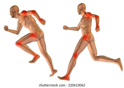 Concept or conceptual 3D human anatomy body with pain isolated on white background as metaphor to health, medicine, medical, biology, osteoporosis, arthritis, joint, disease inflammation or ache