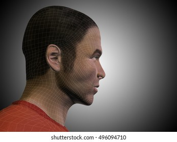 Concept or conceptual 3D illustration wireframe young human male or man face or head on gray background metaphor to technology, cyborg, digital, virtual, avatar, model, science, fiction, future