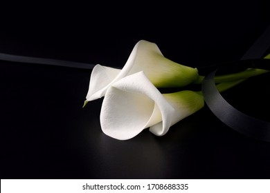 concept of death and sorrow. White Zantedesia flowers with mourning ribbon on a black background. copy space. banner.