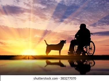 Concept of disability and old age. Silhouette of disabled person in a wheelchair with his dog at sunset and reflection in water