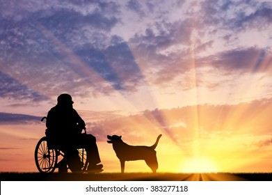 Concept of disability and old age. Silhouette of disabled person in a wheelchair with his dog at sunset