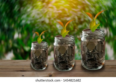 Concept of economic growth. Coins in glass jar set on wooden plates and a green background with sun light,