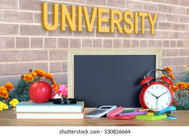 A concept of education with book and university word (composition)