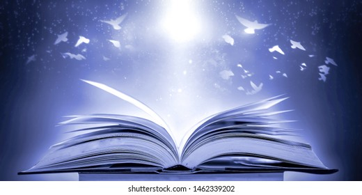 The concept of education of knowledge in the opening of the old book in the library, along with the magical magic that flew out of the book to the goal of success in the classroom.