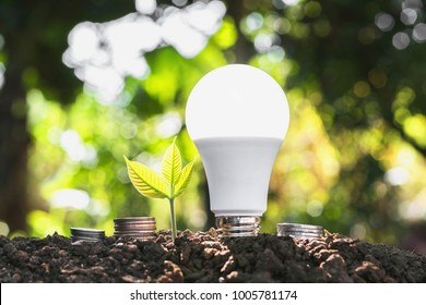 concept energy saving lightbulb with plant growing and money stack. idea business finance