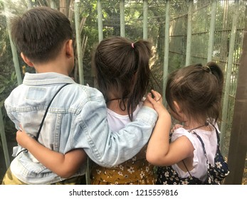 Concept of family time and education in the zoo. Funny and happy little three asian kids boy and girls (3-6 years old) standing and looking through glass at to a big lion in the cage.