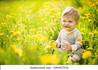 Concept: family values. Portrait of adorable innocent brown-eyed baby playing outdoor in the sunny dandelions field and making funny faces.