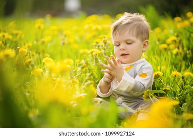 Concept: family values. Portrait of adorable innocent funny brown-eyed baby playing outdoor in the sunny dandelions field.