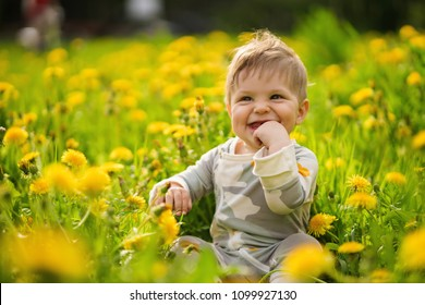 Concept: family values. Portrait of adorable innocent brown-eyed baby play outdoor in the sunny dandelions field and making funny faces.