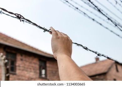 Concept of gender abuse. A woman's hand grasping barbed wire  in Auschwitz  concentration and extermination camp built and operated by Nazi Germany in German-occupied Poland by the Third Reich