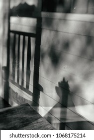 The concept of gone but not forgotten inspired by shadows of a chair and the spirit of a beloved little dog on the front porch.