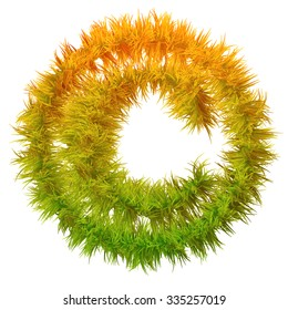 Concept green and orange grass, eco or ecology font, part of a set or collection on white background  for nature, summer, spring, ecology, environment, plant, winter, ecological, conservation design