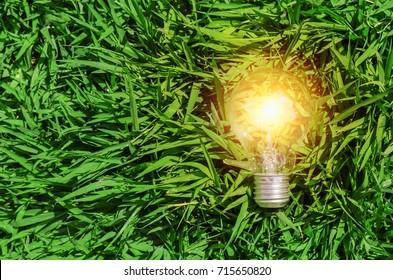 concept idea eco, energy light bulb on green grass