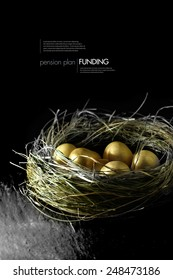 Concept image for pension fund management. Gold eggs in a grass birds nest against a black background. Copy space.