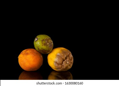 Concept. Improper storage of citrus fruits. Spoiled lime, rotten lemon and ugly orange on a dark background. Ugly citrus fruits. Reflection. Copy space.