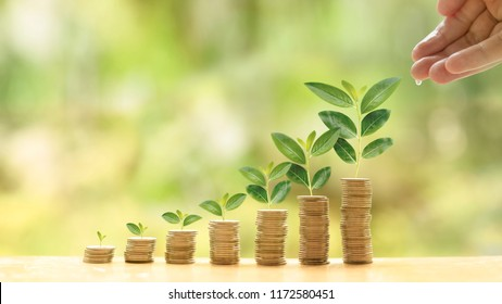 Concept of investment like a growing plant. A hand of investor give water for investing fund. It is collect coin and golden bokeh background. It is wallpaper or backdrop for investment and cumulative
