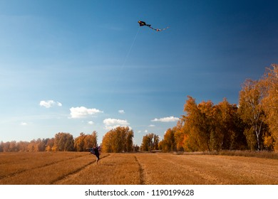 Concept of livestyle and family outdoor recreation in autumn. A young woman with baby  enjoys nature and plays with a kite on a warm autumn sunny day in the background of a field and yellow trees.