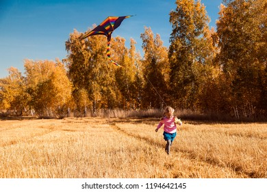 The concept of livestyle and family outdoor recreation in autumn. A blond cheerful girl enjoys nature and plays with a kite on a warm autumn sunny day in the background of a field and yellow trees.