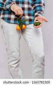 Concept of male sexual diseases. A man at the level of the genitals holds tangerines or oranges on a twig, and holds leaves in his hands. Testicular cancer