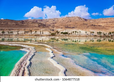 The concept of medical and ecological tourism. Therapeutic Dead Sea, Israel. Picturesque stripes of salt on the shallow seashore