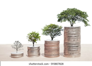 Concept of money tree growing from coins, isolated on white background, with copy space for adding more text. (Clipping path included for design work)