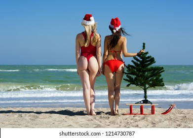 Concept: New Year on the beach. Two beautiful sexy girl in a red swimsuit and Christmas hat with sled and Christmas tree on the beach