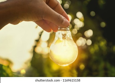 concept power energy in nature. hand holding lightbulb with solar