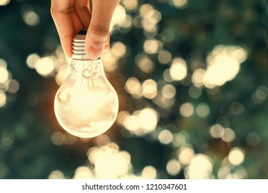 concept power energy in nature. hand holding lightbulb and sunlight background