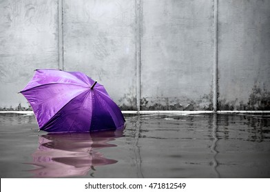 Concept of purple umbrella floating on flooded street and waiting for help me after the rain.