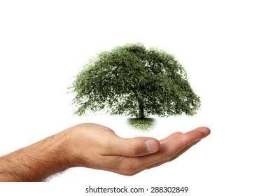 Concept of renewable energy # 2