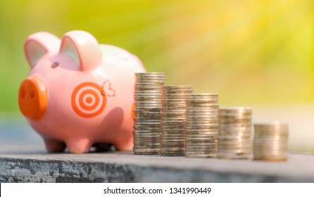 The concept of saving money, Piggy bank and coins over blurred garden background