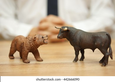 concept of stock market and investing, bull and bear are watching each other