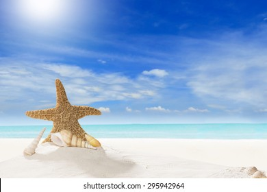 Concept Summer. Starfish and Shell on Sandy Beach