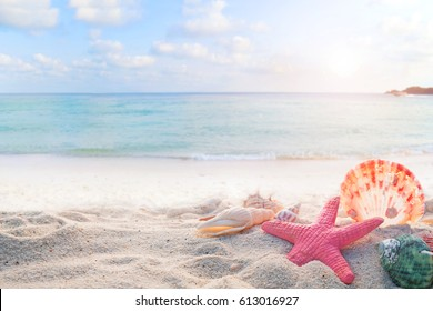 Concept of summertime on tropical beach. Seaside summer beach with starfish, shells, coral on sandbar and blur sea background. vintage color tone.